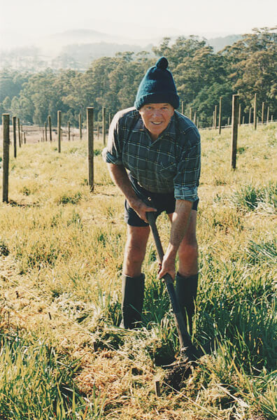 How to use a mattock at Grey Sands Vineyard, Tasmania