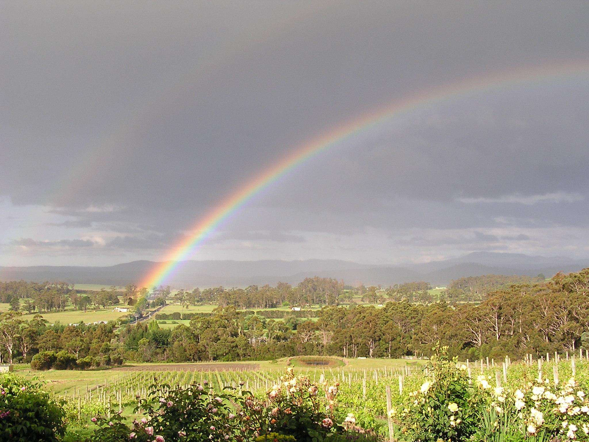 Rainbow over Grey Sands Vineyard