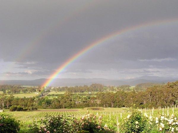 Double rainbow over Grey Sands vineyard