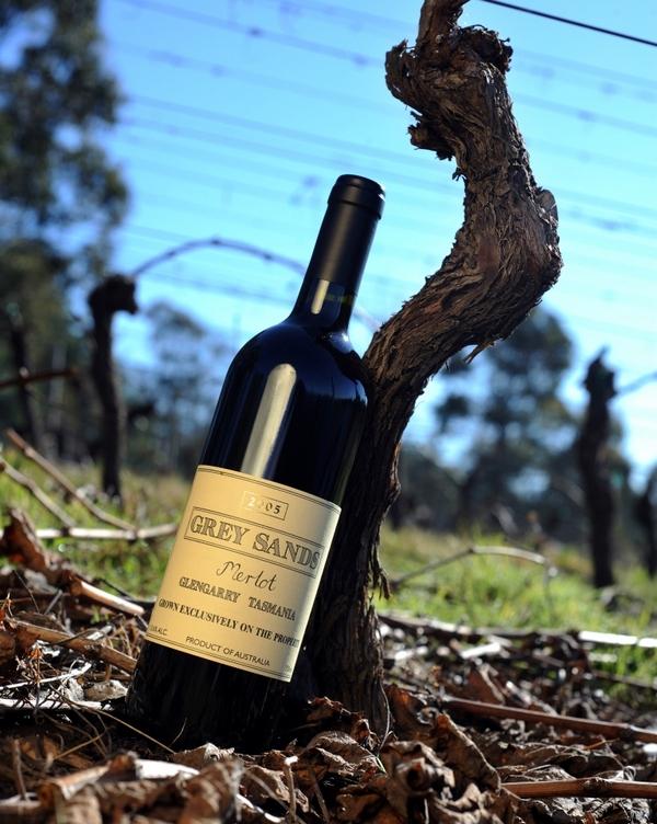 Bottle of 2005 Grey Sands Merlot leaning against Merlot vine trunk