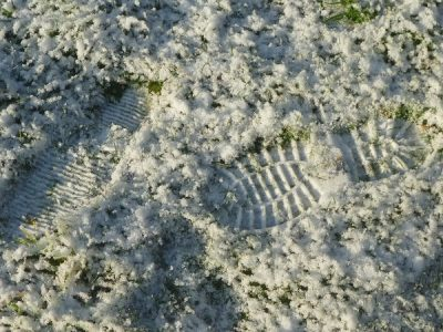 tamar valley wines Bootprints in snow